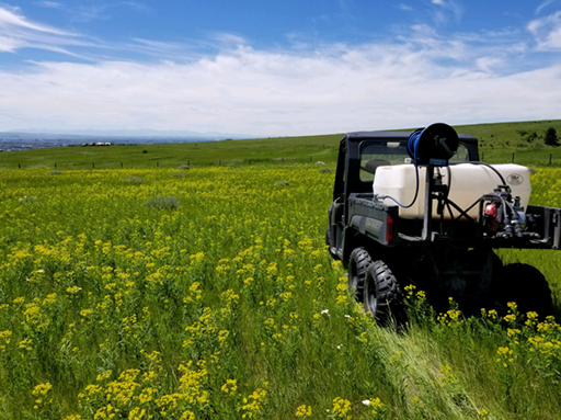Montana Spraying Company | Noxious Weed Spraying and Weed Control in